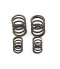 Valves springs zs