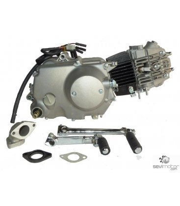 ENGINE ZS110