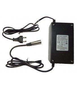 Cargador bateria 1800w