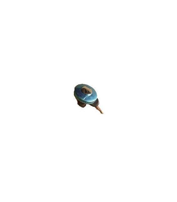Buggy filler cap with key