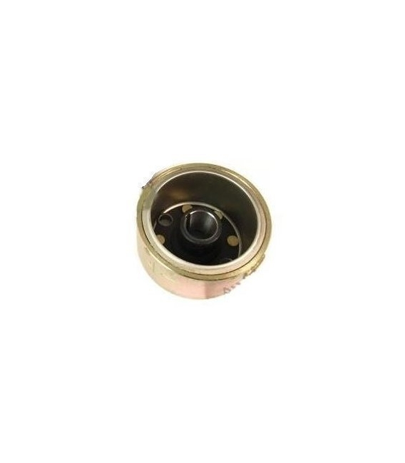 Pato magnético motor ZS155