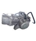 Engine zs190cc 2v