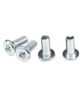Set insets screws brake disc