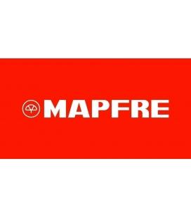Seguro Mapfre or AMV racing
