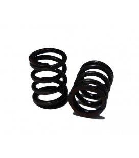 Hard springs valves