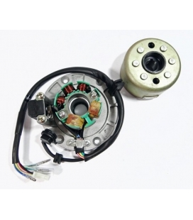 Engine ignition zs small + magnet