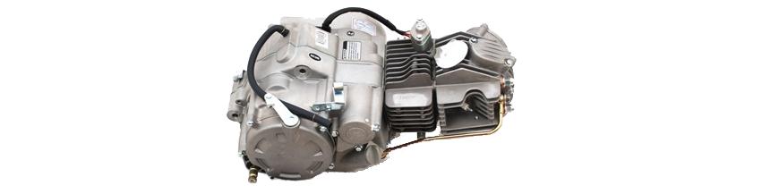 ENGINE ZS155/160