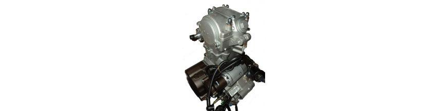 MOTOR ZS250