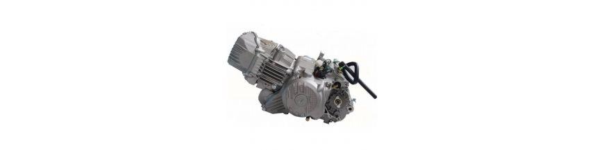 ENGINE ZS190
