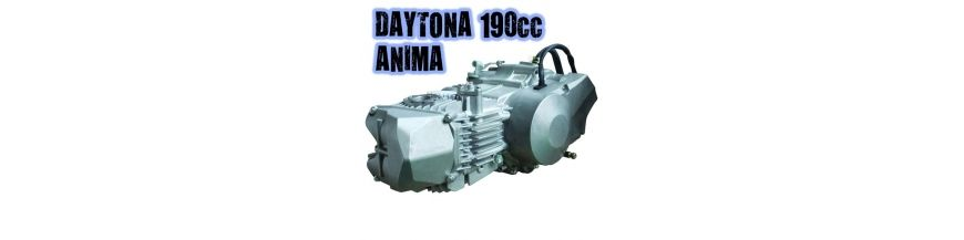 ENGINE DAYTONA
