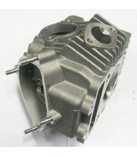 Complete cylinder head yx